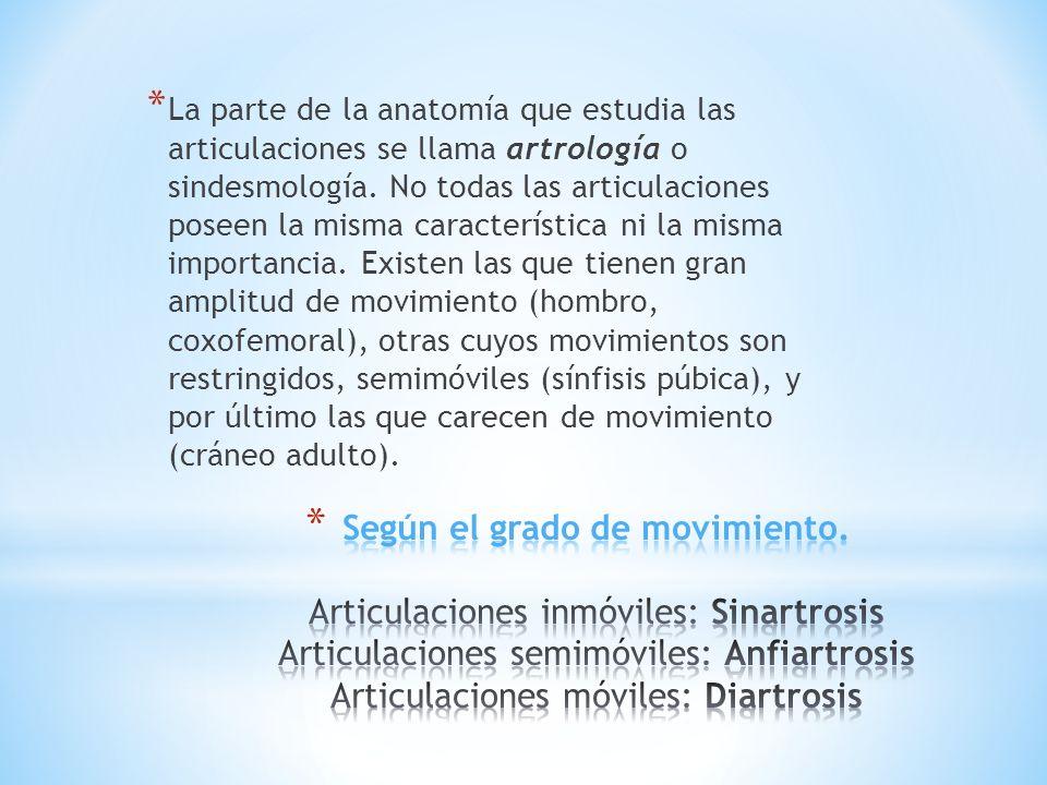 Artrología Generalidades Tutores Anais Chambe Pedro Lizama. - ppt ...