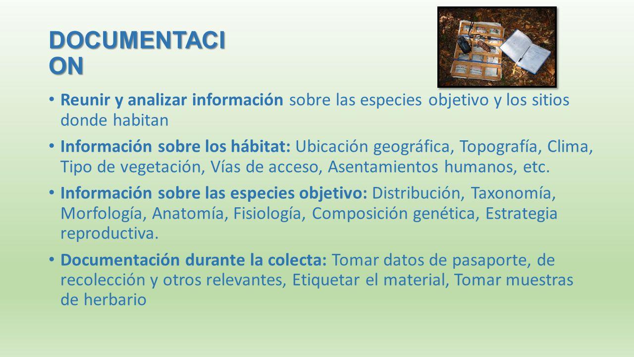 Bonito Etiquetado Anatomía Y Fisiología Adorno - Imágenes de ...