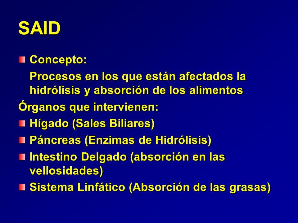 Síndrome de Absorción Intestinal Deficiente (SAID) - ppt descargar