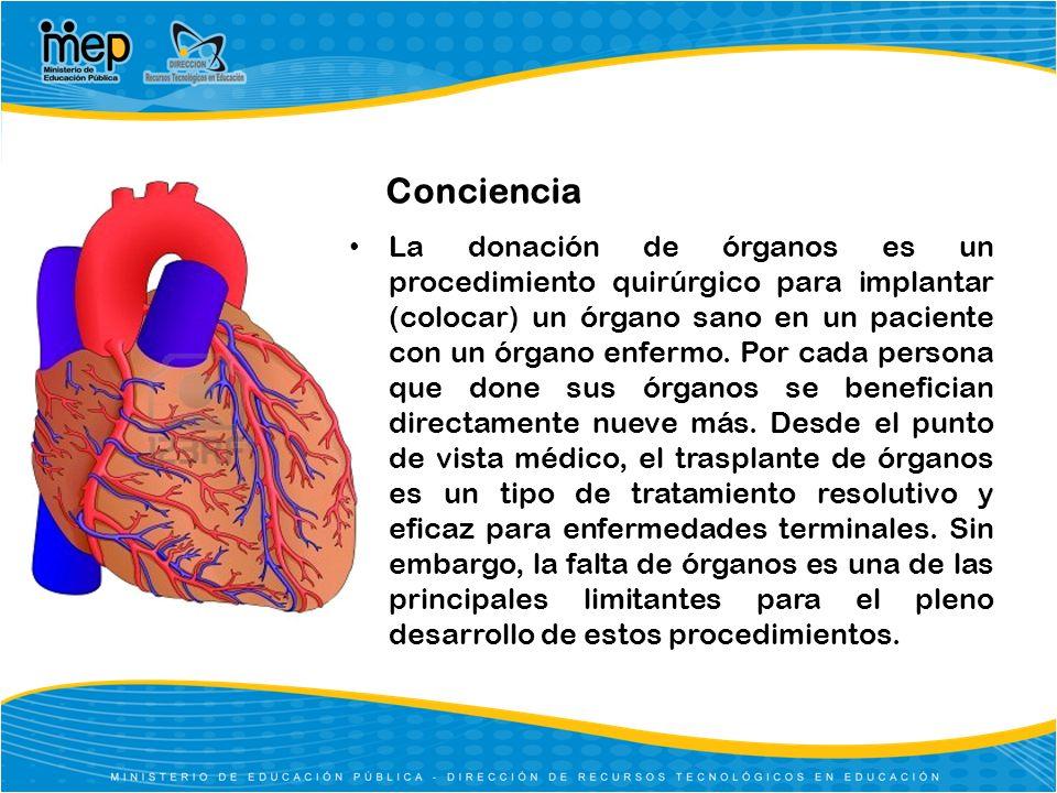 Semana nacional de cultura para la donación de órganos - ppt descargar