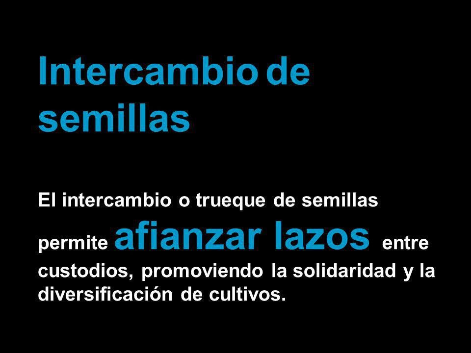 Intercambio de semillas