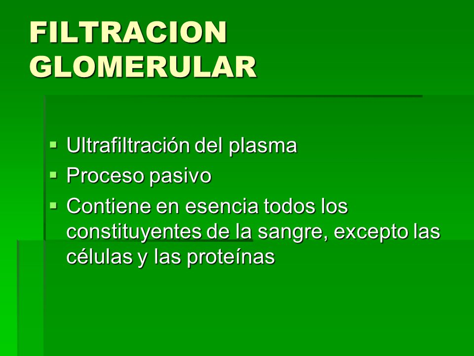 FISIOLOGIA SISTEMA URINARIO - ppt video online descargar