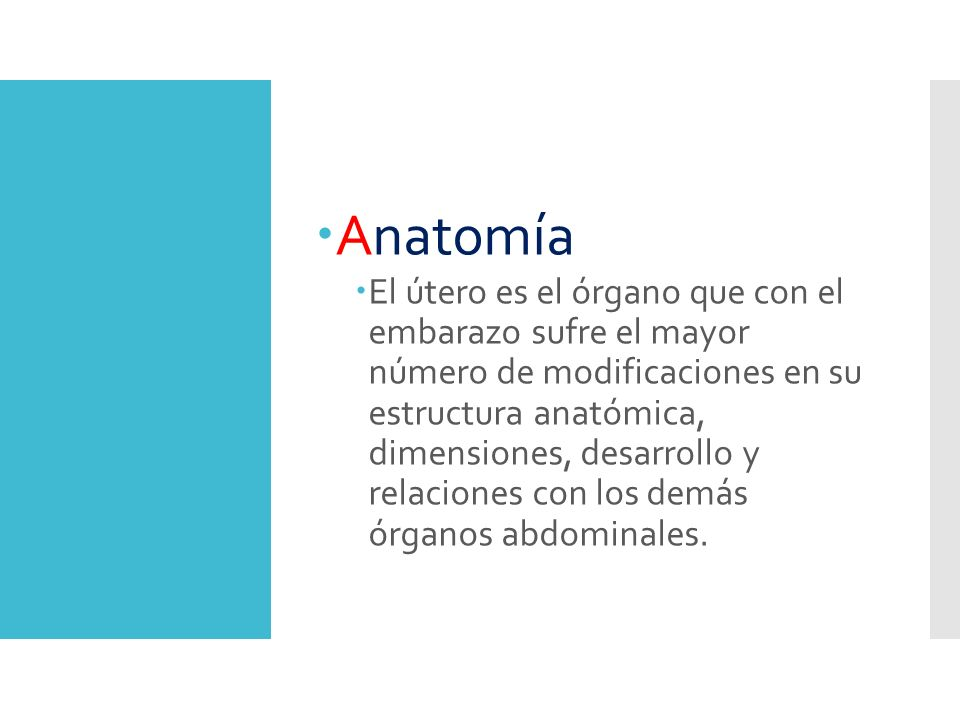 Fisiología de la Contracción Uterina - ppt video online descargar