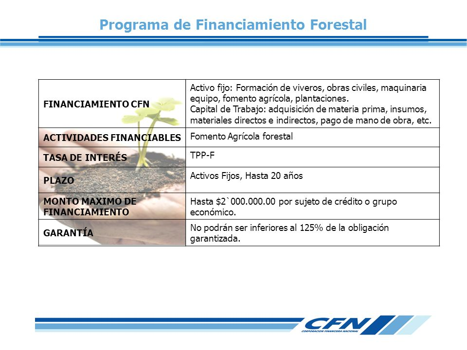 Programa de Financiamiento Forestal