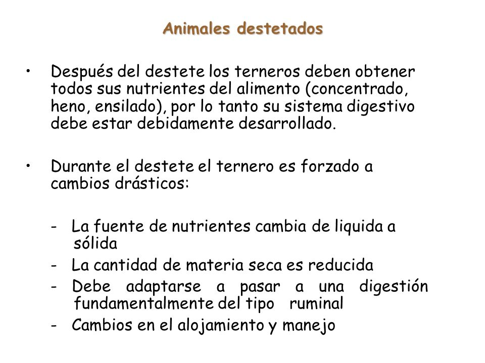 Animales destetados