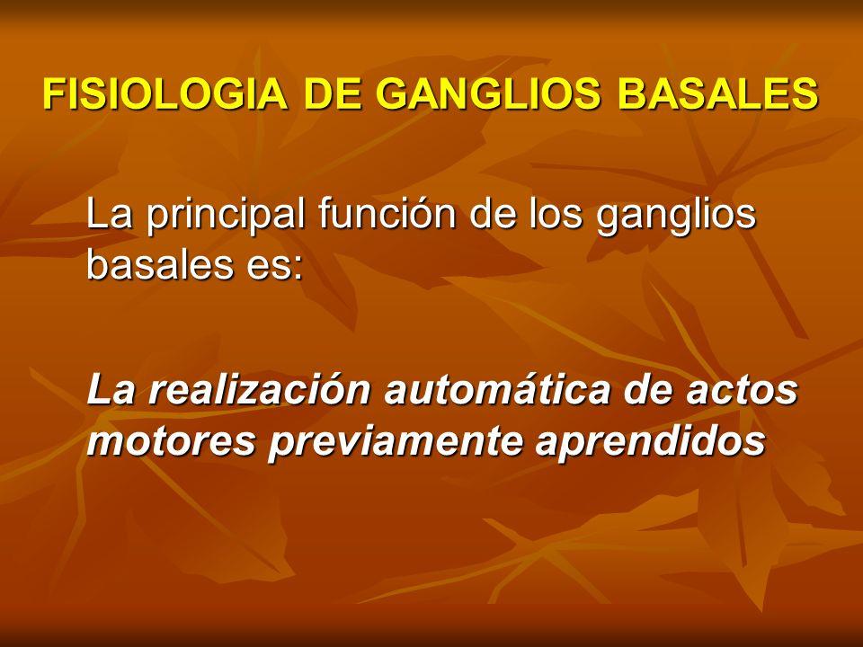 FISIOPATOLOGIA DE GANGLIOS BASALES - ppt video online descargar