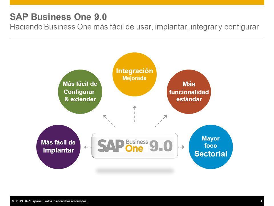sap business one 9.0 pdf