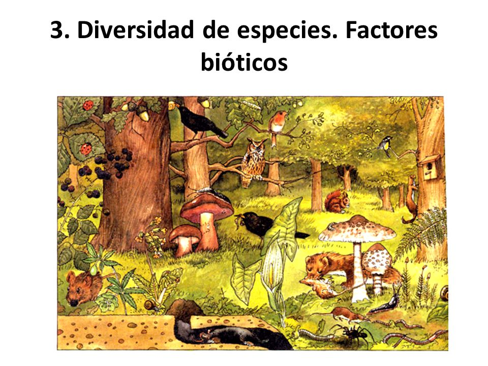 FACTORES BIOTICOS DOWNLOAD
