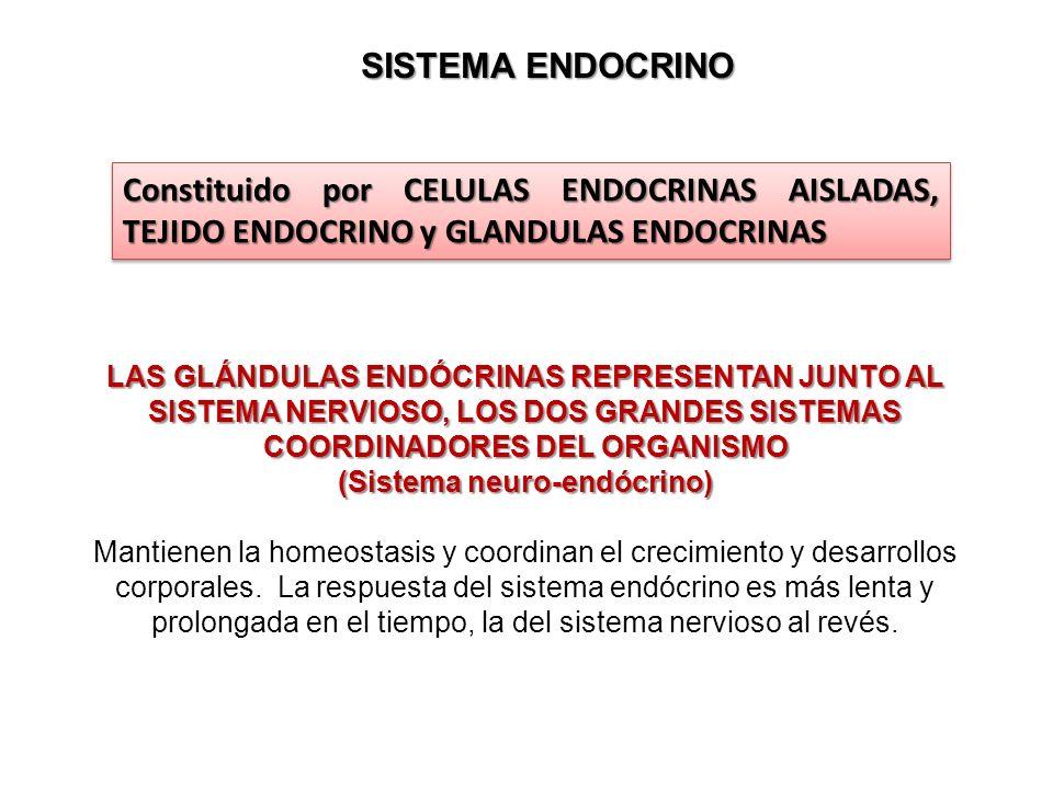 Dra. Alejandra Quintana - ppt descargar