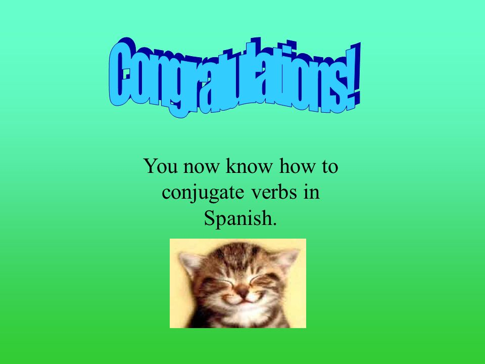 You now know how to conjugate verbs in Spanish.