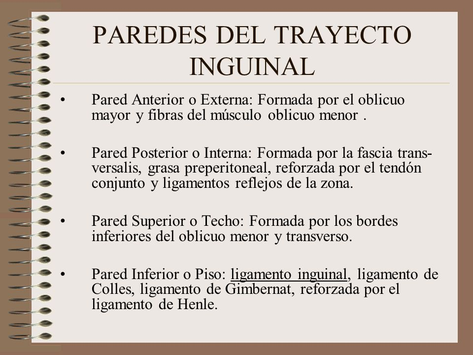 HERNIA INGUINAL Dr.Alejandro Pasco Peña Universidad Libre - ppt ...