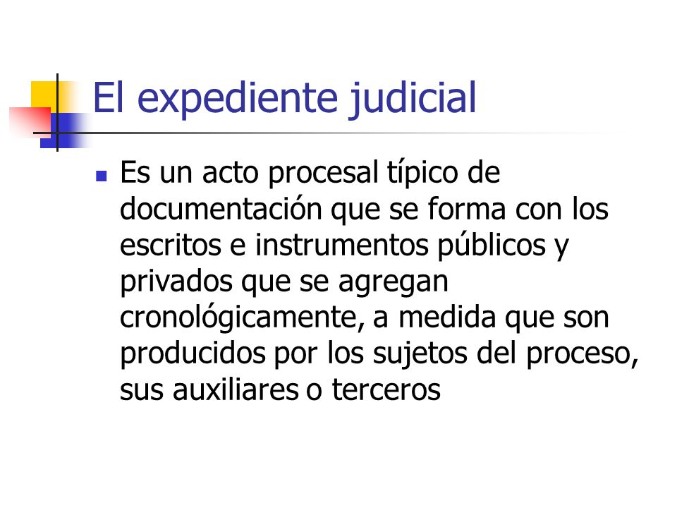 El expediente judicial