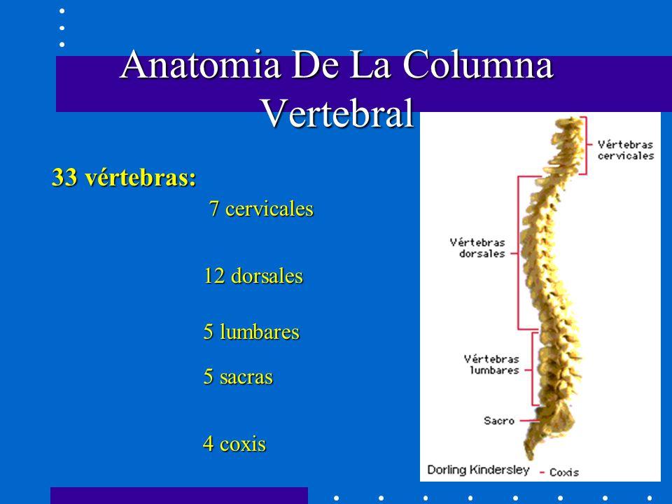 BLOQUEO EPIDURAL Elena Navas Armero Servicio de Farmacia Marzo ppt ...