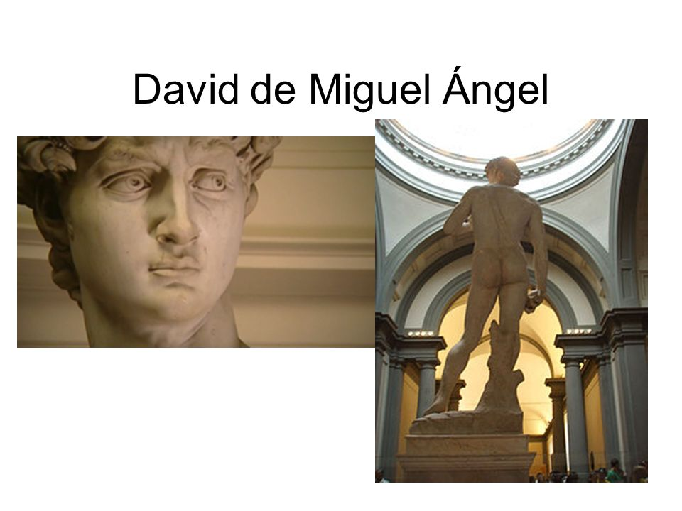 David de Miguel Ángel