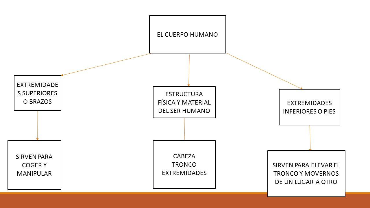 ESTRATEGIAS Y TÉCNICAS DE APRENDIZAJE - ppt descargar