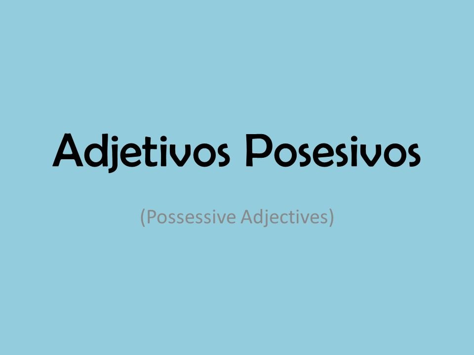(Possessive Adjectives)