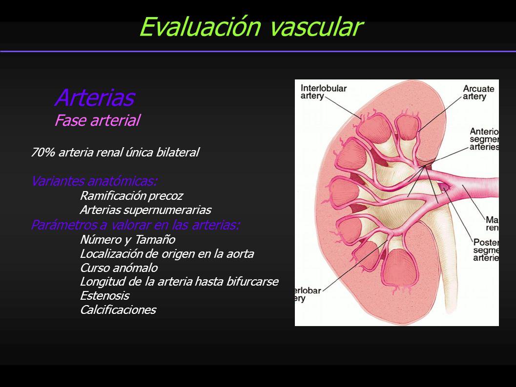Yolanda Pallardó Calatayud - ppt video online descargar