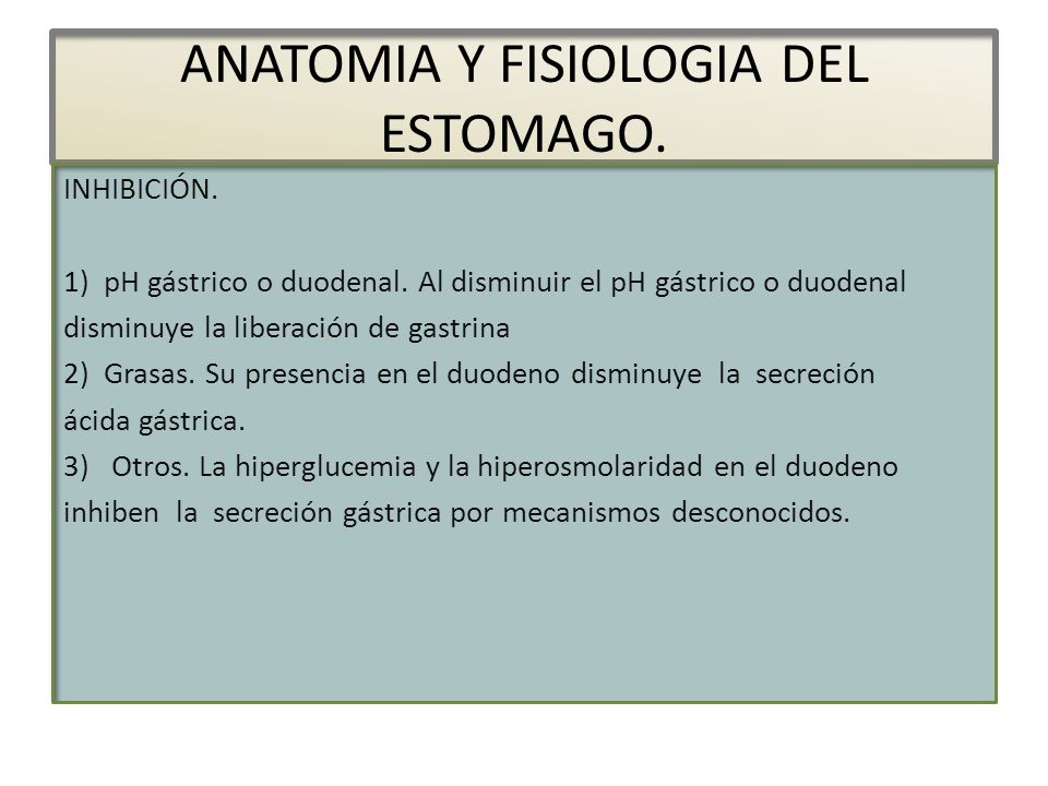 ANATOMIA Y FISIOLOGIA DEL ESTOMAGO. - ppt descargar
