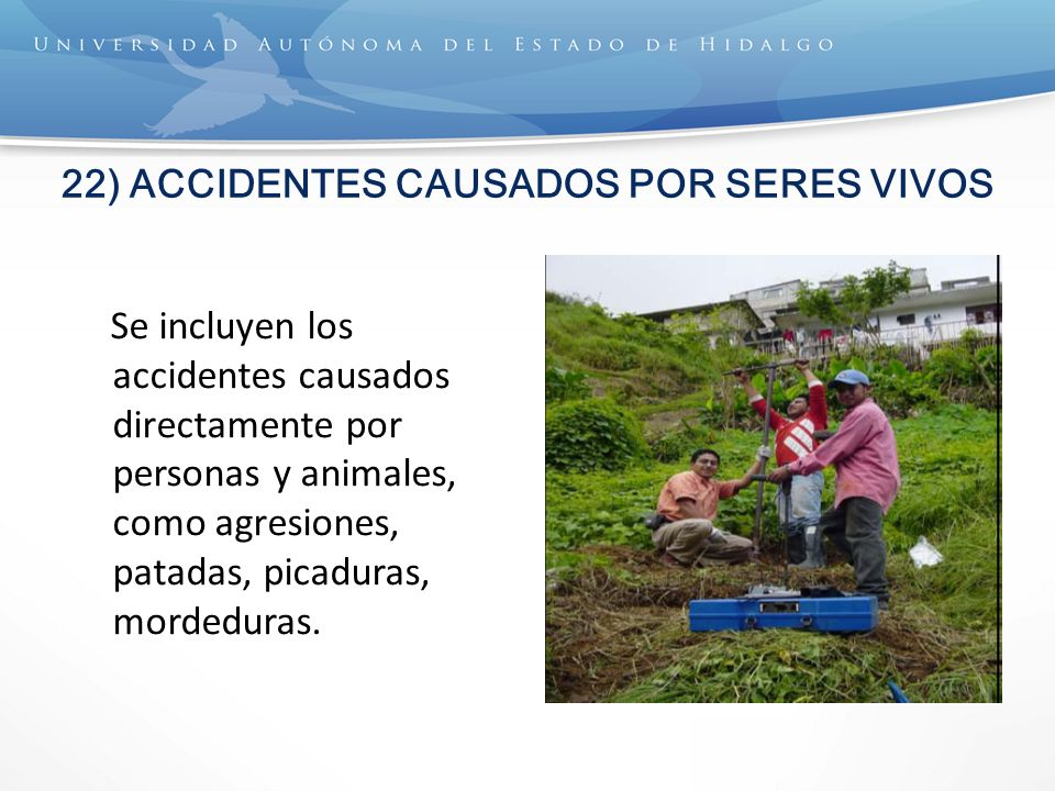 22) ACCIDENTES CAUSADOS POR SERES VIVOS