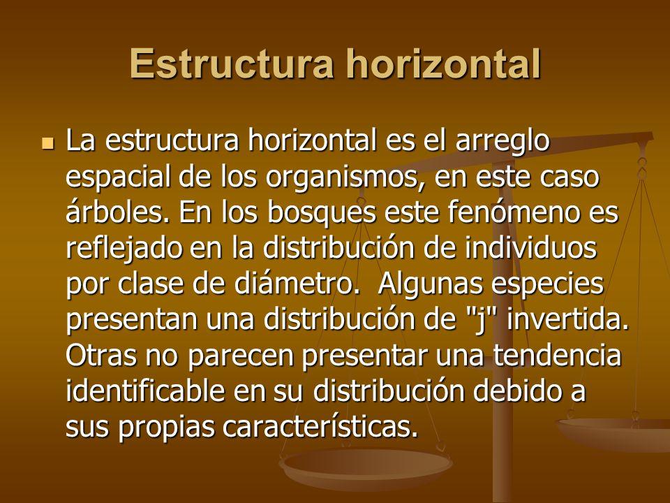 Tema Siete Estructuras Del Bosque Por Manuel Antonio