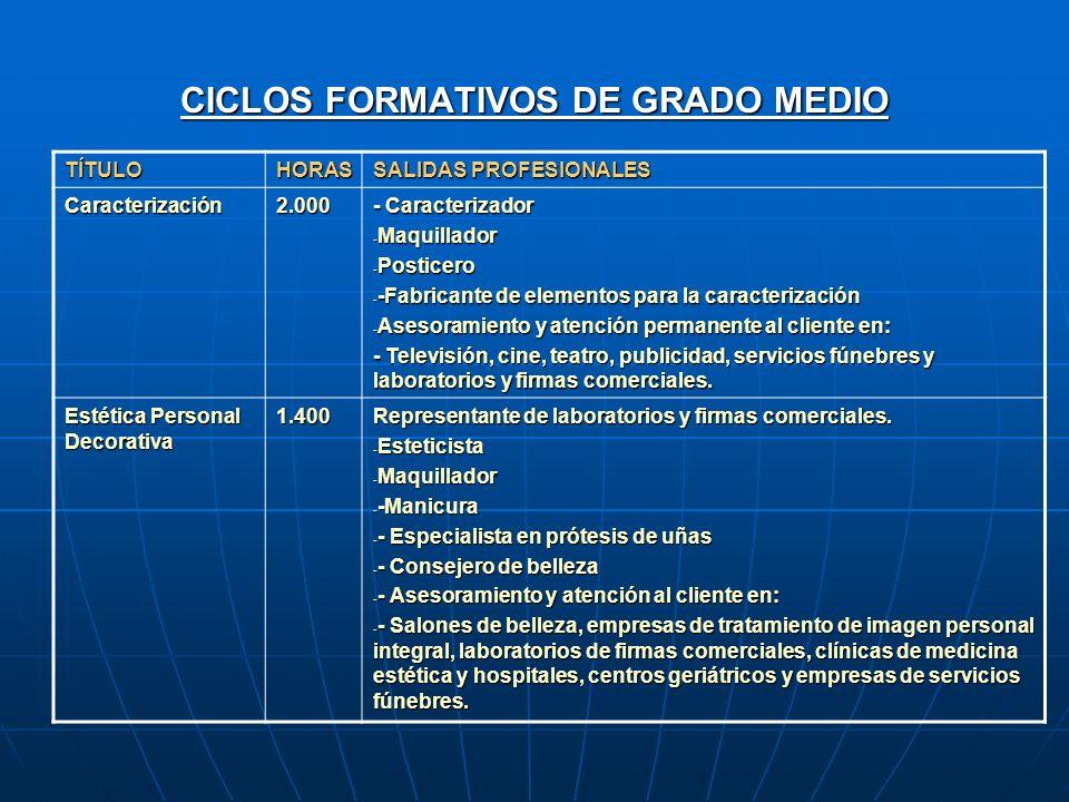 Descripción De La Formación Profesional Reglada En El Sector