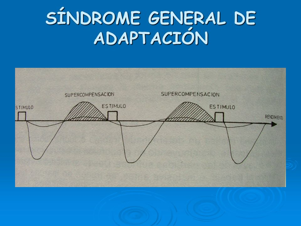 SÍNDROME GENERAL DE ADAPTACIÓN