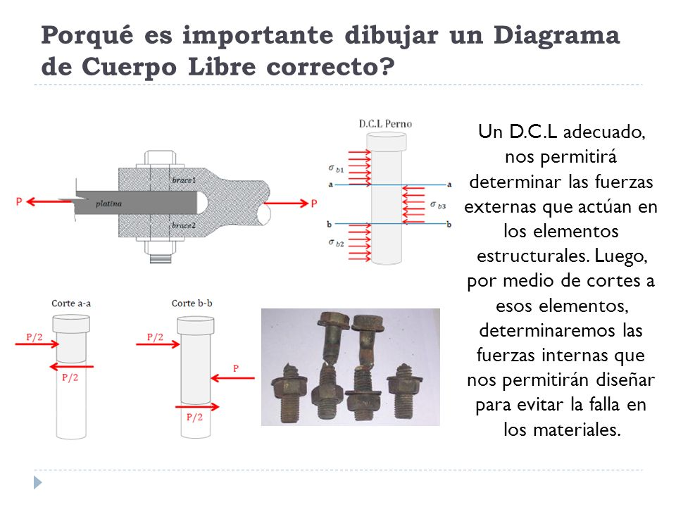Partes Del Diagrama De Cuerpo Libre - Trusted Wiring Diagram •