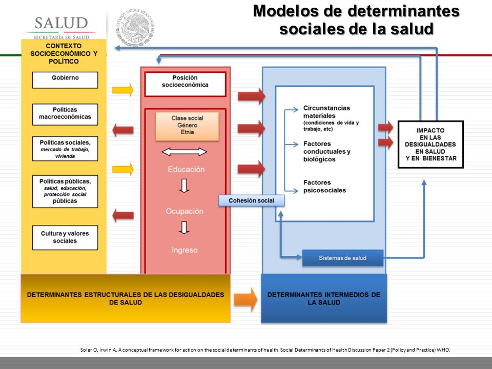 DETERMINANTES DE LA SALUD OMS DOWNLOAD
