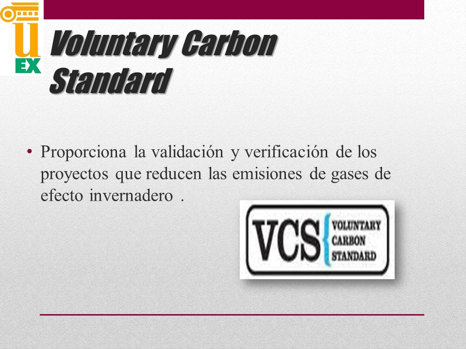 Voluntary Carbon Standard