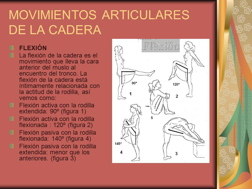 MOVIMIENTOS ARTICULARES DE LA CADERA - ppt descargar