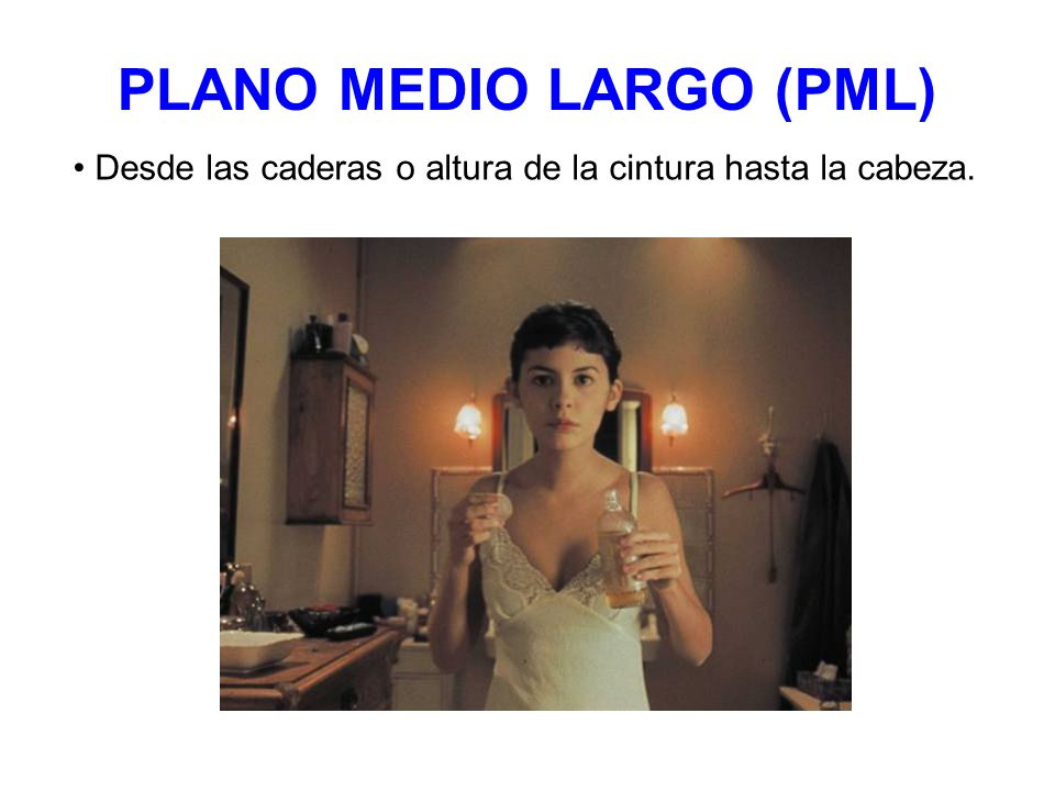 PLANO MEDIO LARGO (PML)