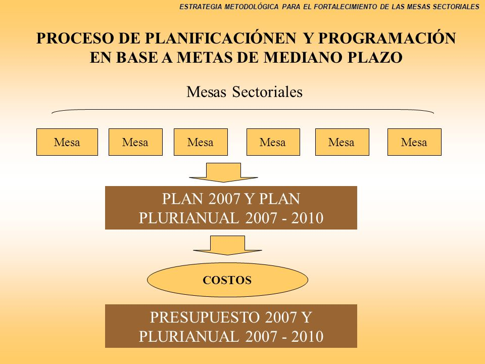 PLAN 2007 Y PLAN PLURIANUAL