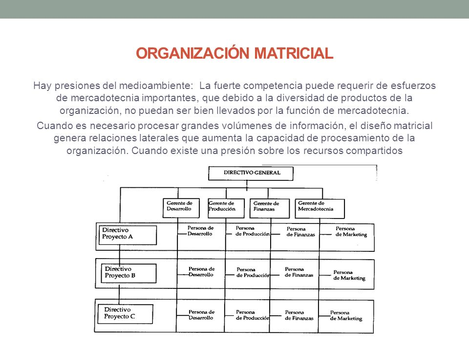 Representación Grafica De La Estructura Organizacional De