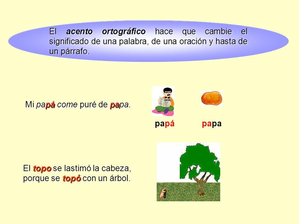 Lengua espa ola 6 de educaci n primaria ppt video for Significado de la palabra arbol