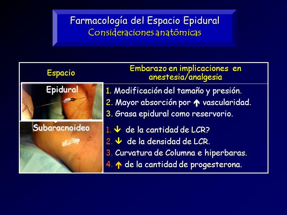 Farmacología del Espacio Epidural - ppt video online descargar