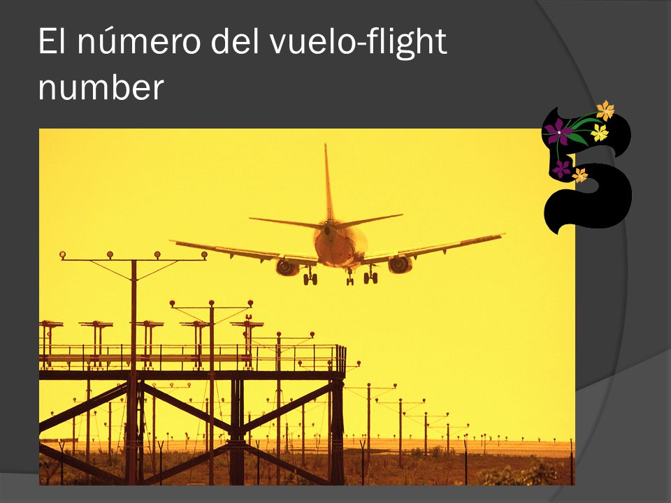 El número del vuelo-flight number