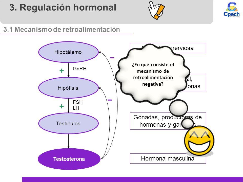 Aparato reproductor masculino, hormonas y sexualidad - ppt video ...