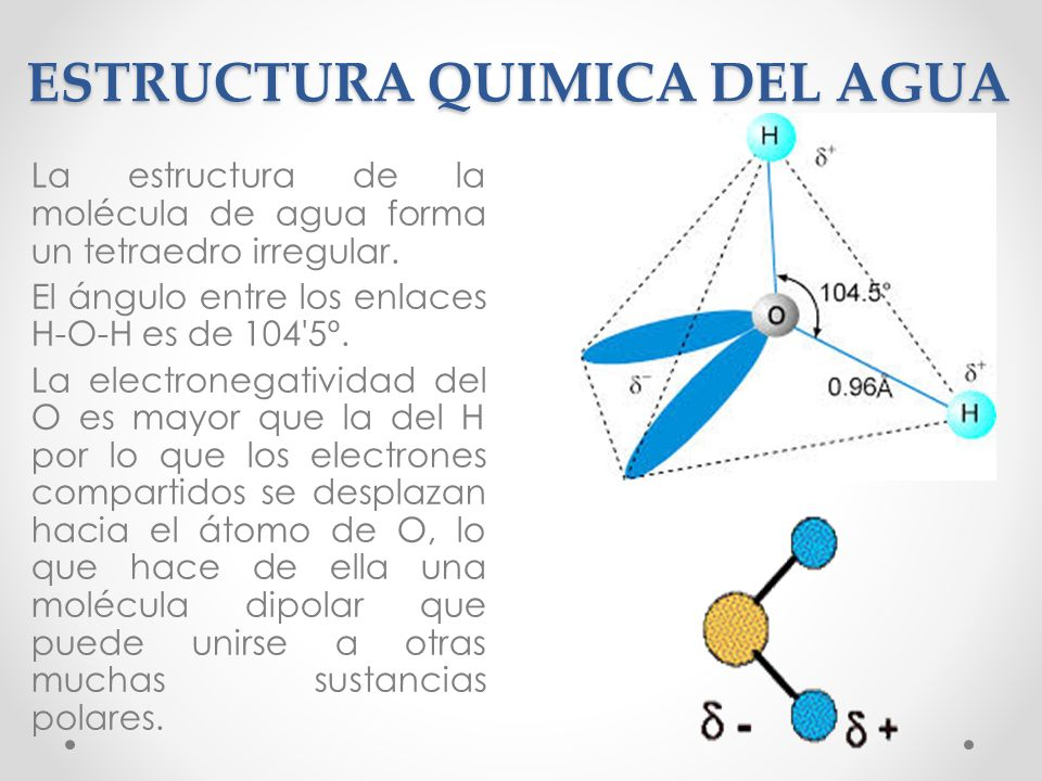 Capitulo 2 Agua Y Ph Bioquimica I Ppt Descargar