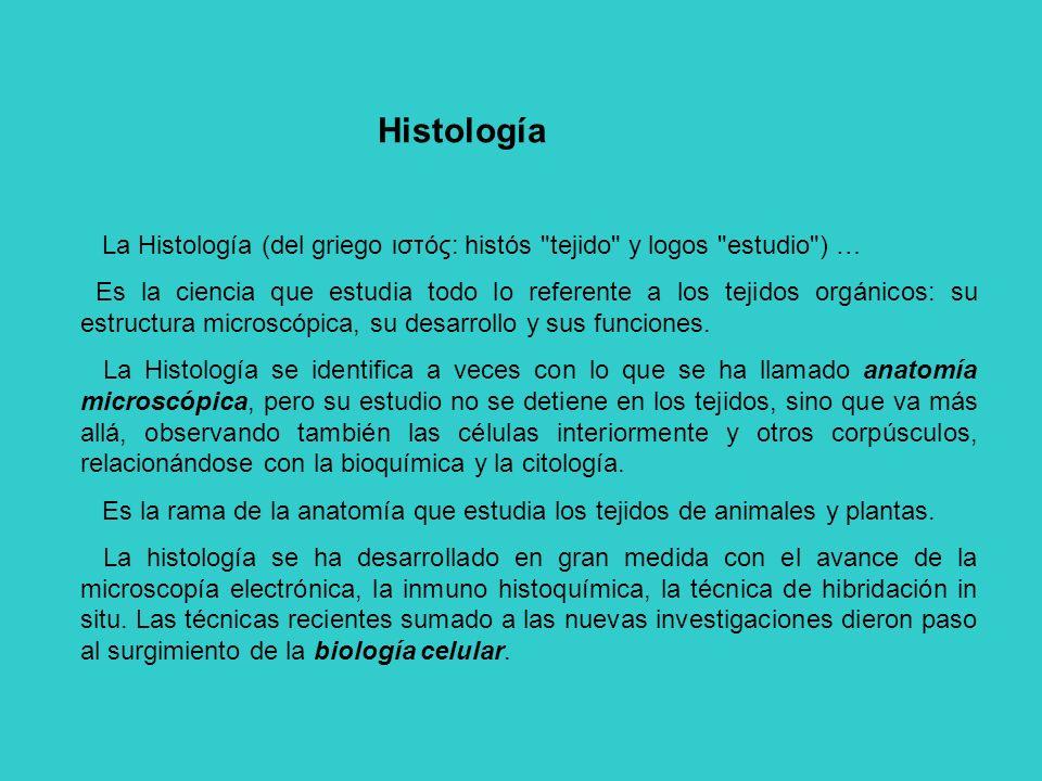 HISTOLOGÍA HUMANA - Introducción. - Concepto. Clasificación. - ppt ...