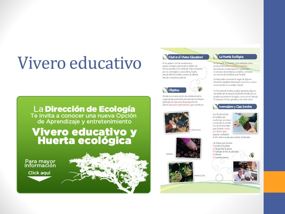 Vivero educativo