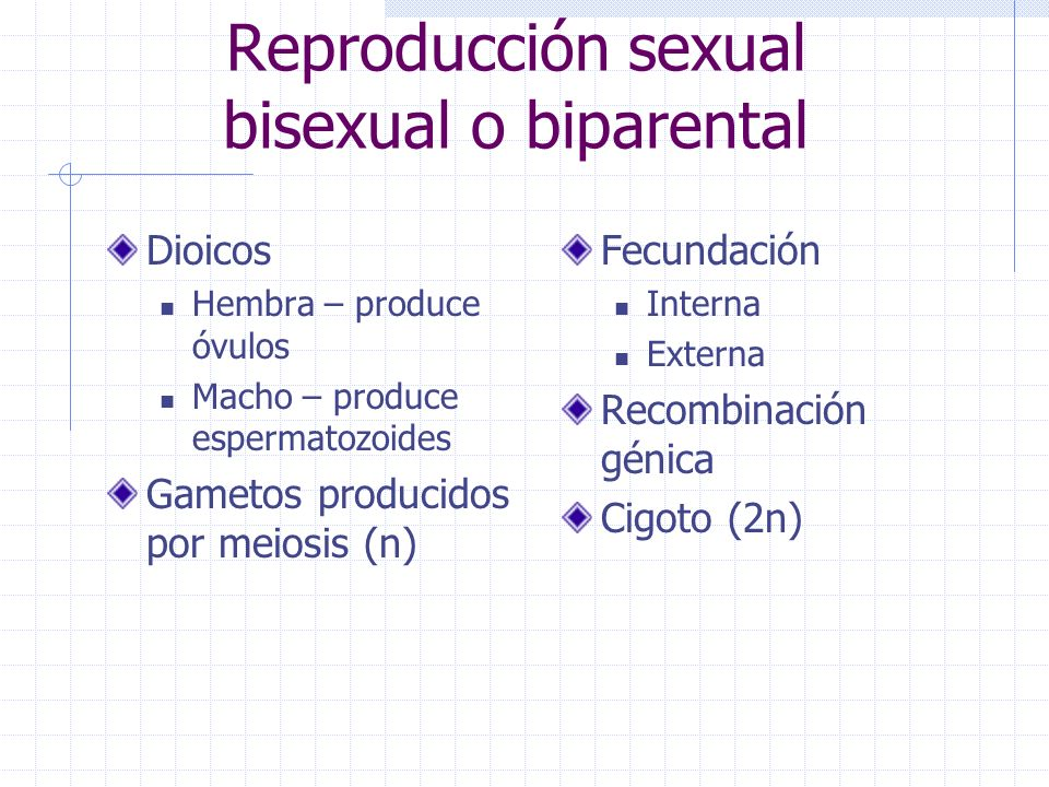 Reproduccion asexual biparental