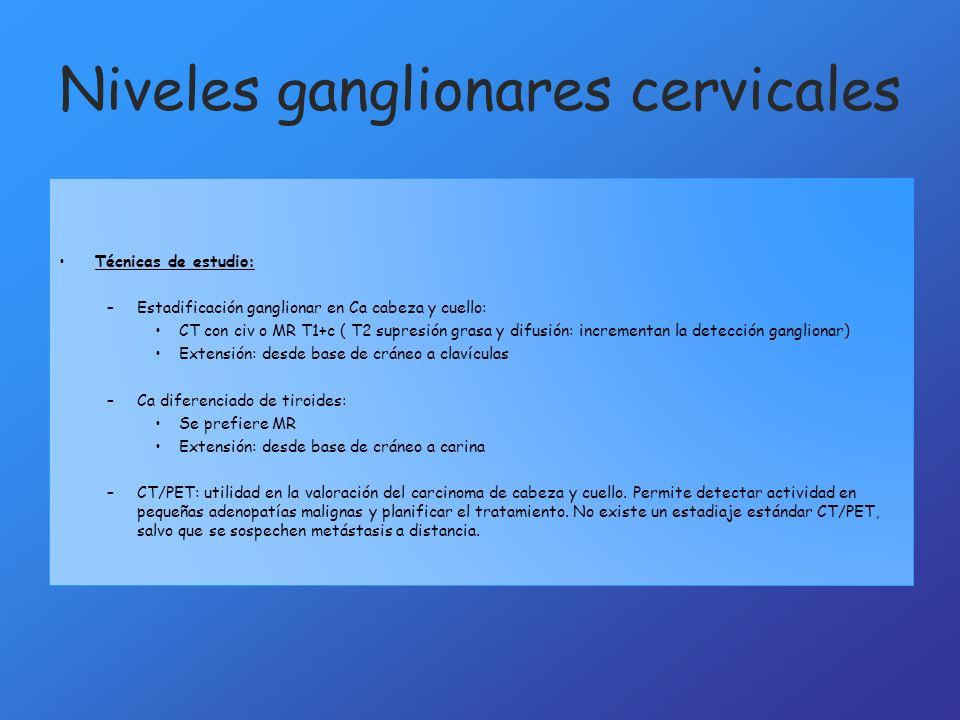 Anatomía cervical Autores: Eva Domínguez Mengod, María Sánchez Pérez ...