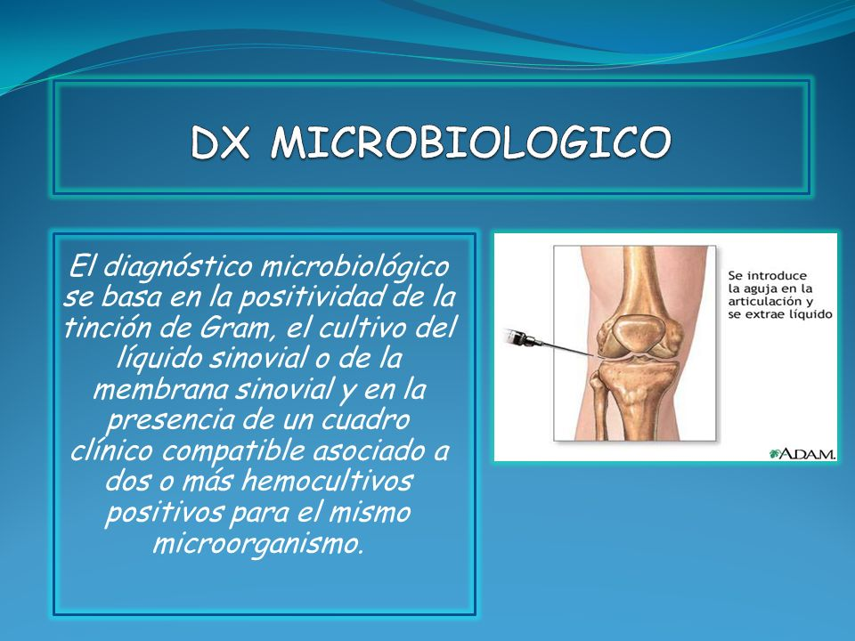 DX MICROBIOLOGICO