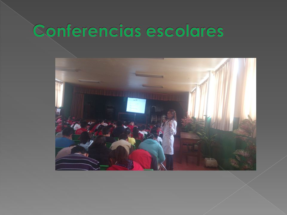 Conferencias escolares