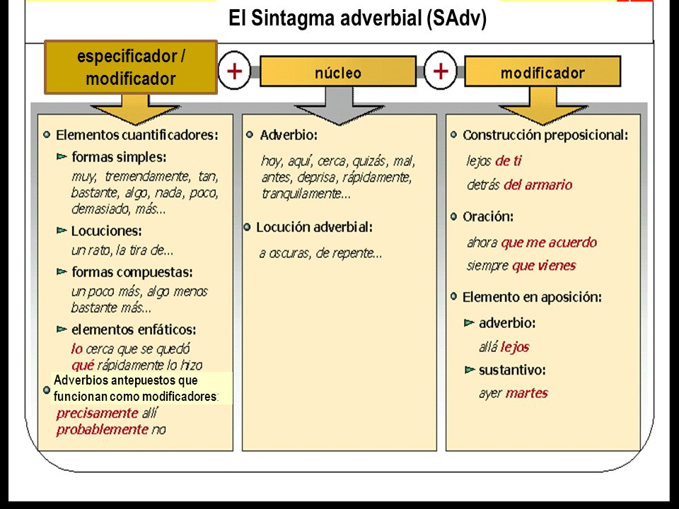 El Sintagma adverbial (SAdv) especificador / modificador
