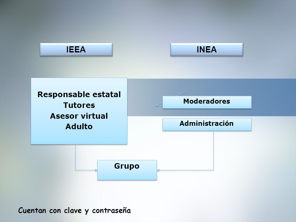 IEEA INEA Responsable estatal Tutores Asesor virtual Adulto Grupo