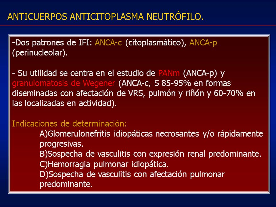 ANTICUERPOS ANTICITOPLASMA NEUTRÓFILO.