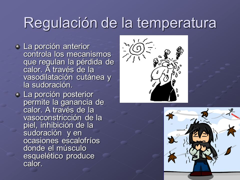 Regulación de la temperatura