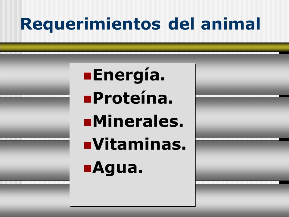 Requerimientos del animal