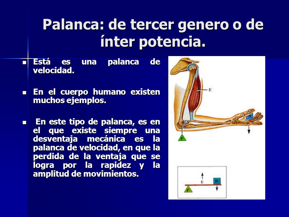CÁTEDRA DE BIOMECANICA - ppt video online descargar